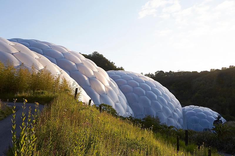 Biomimikra w architekturze